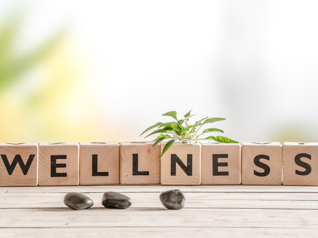 """letter blocks that spell """"wellness"""""""